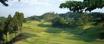 「ライジングゴルフクラブ」の画像検索結果